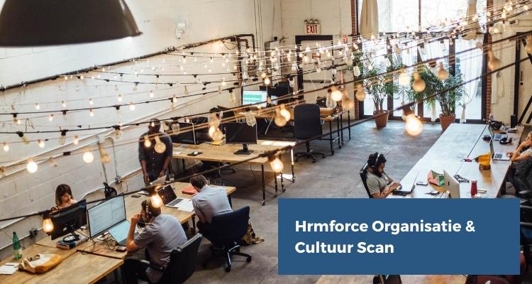 hrmforce organisatie cultuur scan